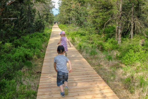 Sommerferien, 50 Unternehmungen mit kleinem Geld, Was mit Kindern unternehmen, Sommerferien was mit den Kindern unternehmen