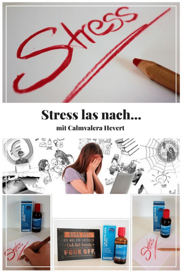 Als Mutter leidet man oft unter eine 4- oder 5-Fach Belastungen. Man kümmert sich um Kinder, Haushalt und geht auch noch arbeiten. Dazu kommen noch eine Vielzahl von Aufgaben die einen früher oder später Überfordern. Mama im Stress oder sogar der Mama Burnout ist die Folge. Ich erzähle euch, wie das bei mir war und was ich dagegen tue. Außerdem habe ich 6 Tipps gegen Stress für euch!