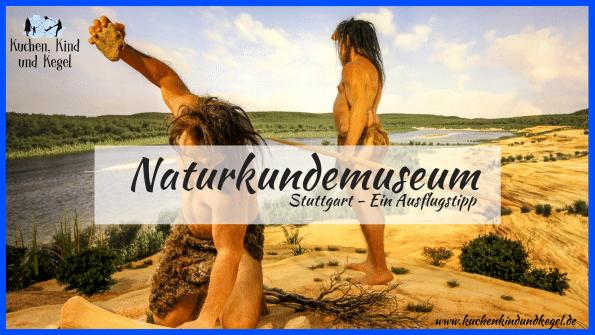 Naturkundemuseum Stuttgart - Ein Ausflusgstipp für schlechtes Wetter, Herbst und Winter, Ausflug mit Kindern, Museum für Naturkunde, Museum Dinosaurier, Museum Tiere