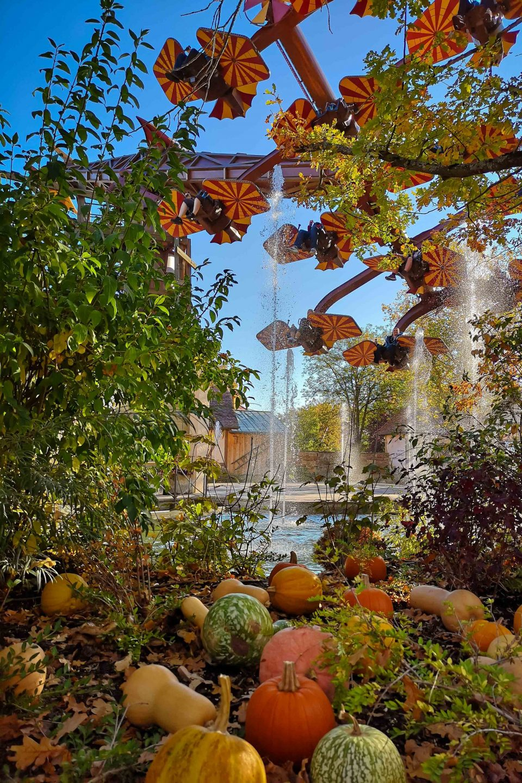 Kindergeburtstag im Freizeitpark - ein herbstlicher Tag in Tripsdrill, Ausflug im Herbst, Herbst Ausflug mit Kindern, Freizeitpark, Tripsdrill, Cleebronn, Freizeitpark Tripsdrill, Geburtstag feiern in Tripsdrill